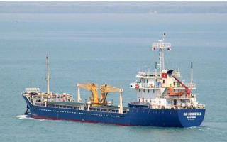 12 thuyền viên tàu Dai Duong Sea về từ Indonesia dương tính với SARS-CoV-2